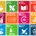 Global Goals inloop