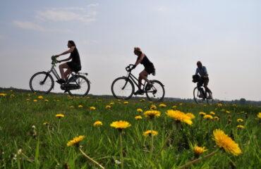 fietsers en paardenbloemen